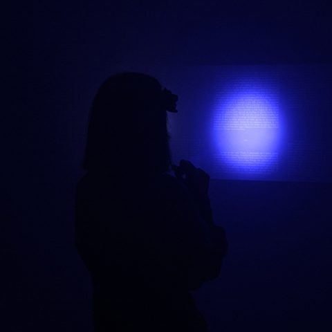 Installation | Solo exhibition at the Museum of the Hospital Center Sainte-Anne | 2012    [in collaboration with architect Valérie de La Chapelle | as part of the Francophone Week]    [texts and voice Camille de Toledo | light design Françoise Diraison |sound  design Xavier Collet]